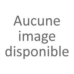 Auguste Derrière